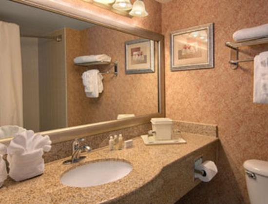 Wingate by Wyndham Convention Ctr Closest Universal Orlando: Bathroom