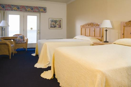 Cherry Tree Inn & Suites: Elk Rapids Studio - Two Queen Beds with a Bay View