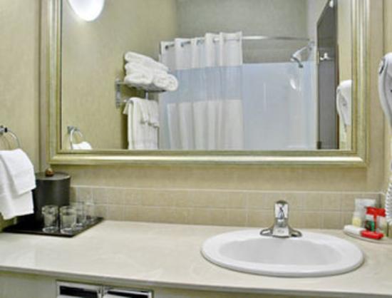 Ramada Stettler: Bathroom