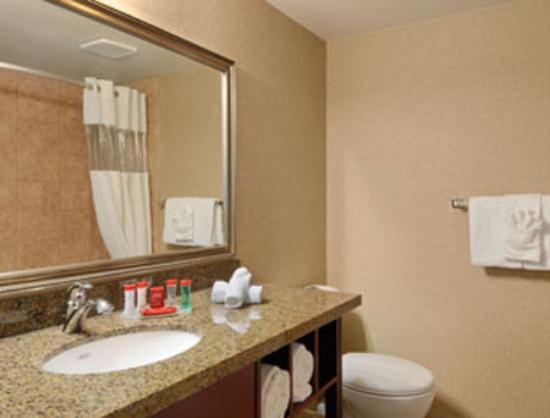 Ramada Kelowna Hotel & Conference Centre: Bathroom