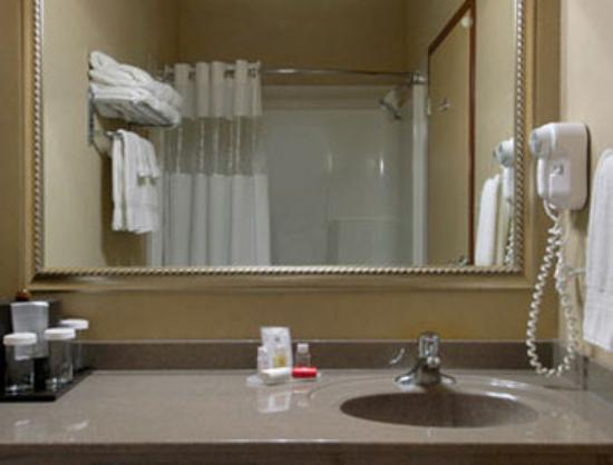 Ramada Drumheller Hotel and Suites: Bathroom