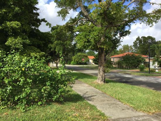 Miami Guest House: Vista do quarto para a frente da casa