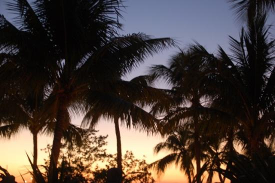 Coconut Palm Inn : View from the balcony