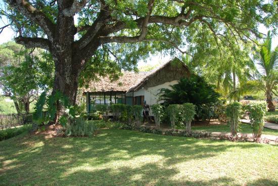 Mnarani Club & Spa: Cottage room