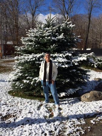 Inn Victoria : November 2014 in Vermont