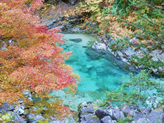Shinshiro, اليابان: 峡谷と紅葉