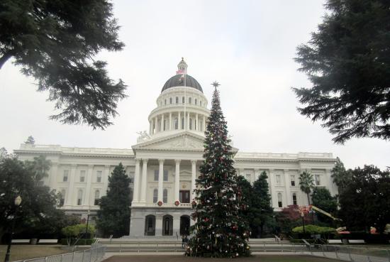 Christmas Tree in Capitol Park, Sacaramento, Ca (2014)