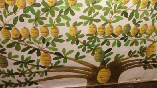 Musee Departemental de la Martinique: Family Tree Picture