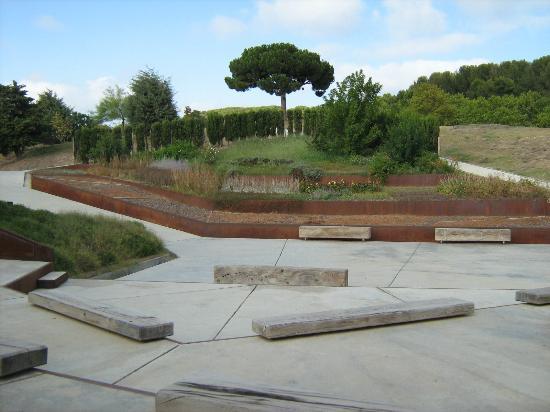 Jardi botanic picture of jardin botanico de barcelona for Barcelona jardin
