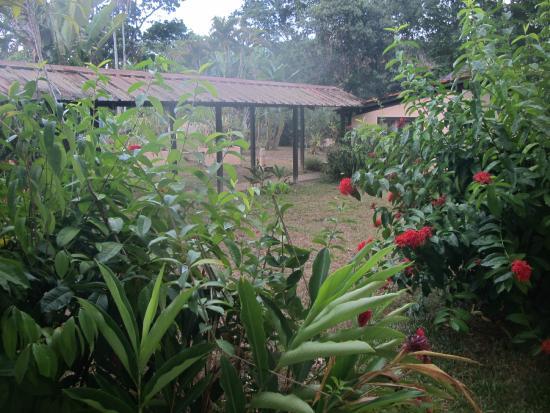 La Chaumiere: Вид из номера на сад