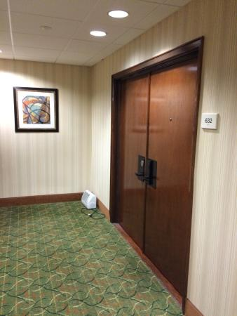 Doubletree Hotel Omaha - Downtown / Old Market: What is that thing and why is it there?