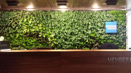 "East Elmhurst, NY: ""Living Wall"""