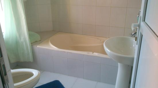 Hotel Access Nepal : bathroom with hot water