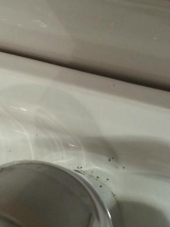 Hotel Baco: Lavamanos sucio