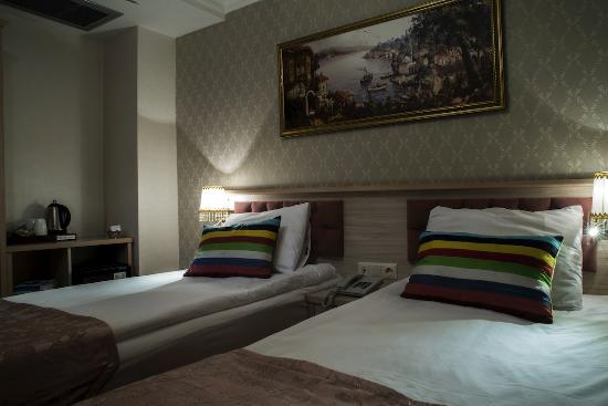 Sultans Royal Hotel : Twin Room