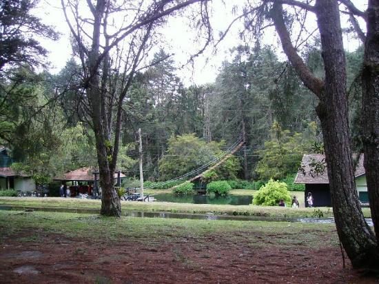 Pousada Recanto Sao Benedito: Horto Florestal