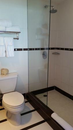 San Juan Water & Beach Club Hotel: Bathroom shower area