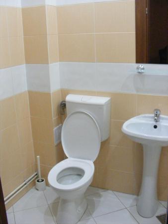 Pensiunea Gallery: Simple and clean bathroom