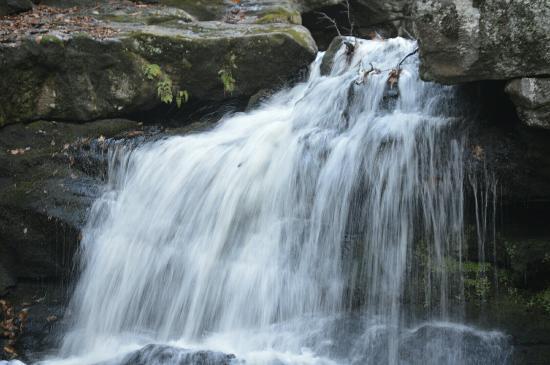 Enders Falls: Still beautiful  in the fall.