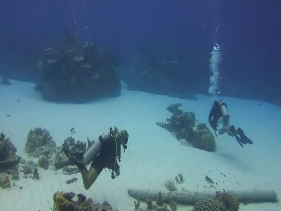 Kosrae Nautilus Resort: Hiroshi Point