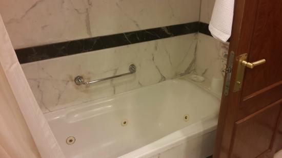 Ramada Plaza Palm Grove: Shower/Bath looked worn