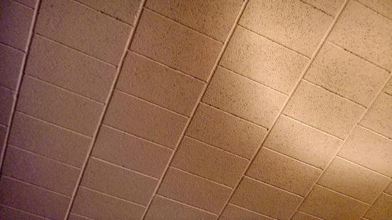 Park Inn by Radisson Indiana: cement block ceiling