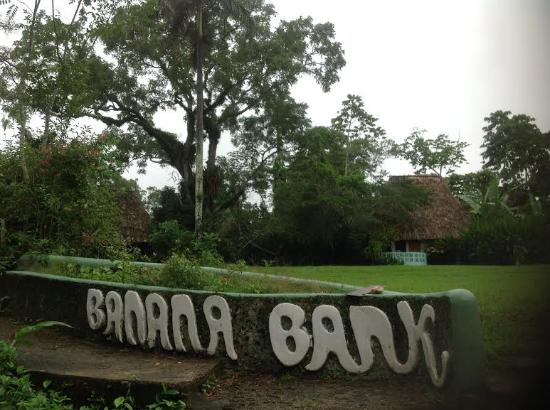Banana Bank Lodge & Jungle Horseback Adventure : Banana Bank from the rive