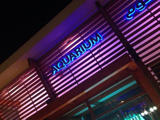 Aquarium yas island abudhabi picture of aquarium for Marina aquarium
