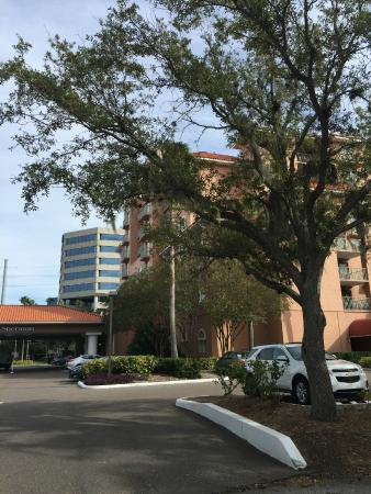 Four Points by Sheraton Suites Tampa Airport Westshore: Hotel