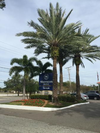 Sheraton Suites Tampa Airport Westshore: Hotel