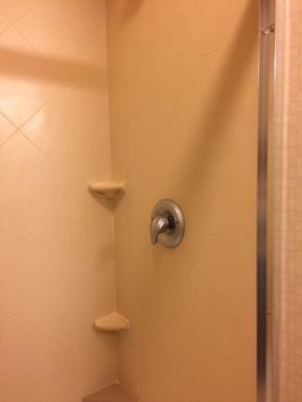 Hampton Inn Davenport: Clean shower only unit - so much nicer to shower in than tub/shower unit!