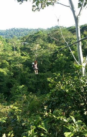 Terraventuras Jungle Expeditions : Ziplining