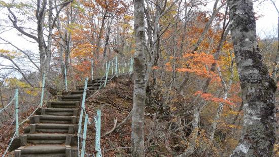 Nakauonuma-gun, Japan: 100段をこえる石段