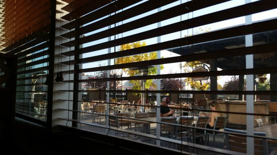 A Glimpse Of The Patio Through The Blinds....fall Shutting Us Out