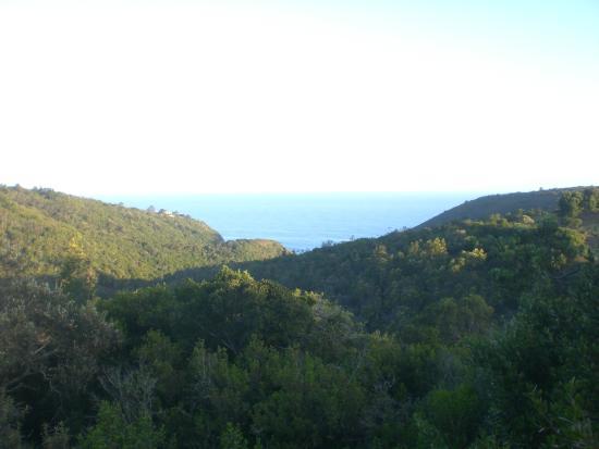 Surfari: view of the sea