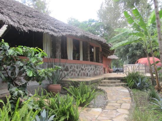 WF Kiboko Lodge