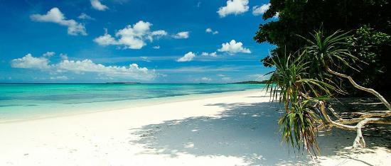 Maluku照片