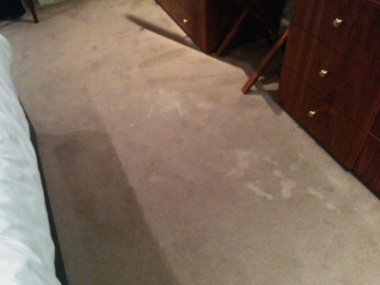 Ballantrae Albany Hotel: Carpet in room