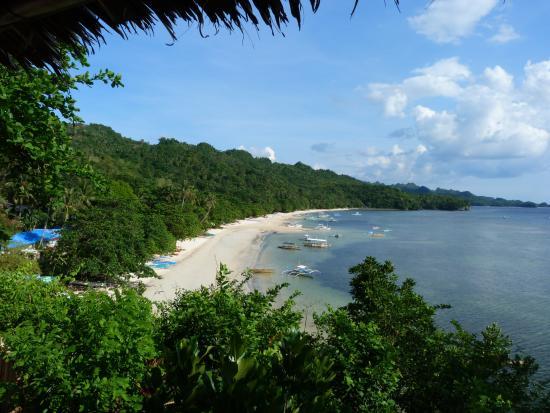 Artistic Diving Resort: beach