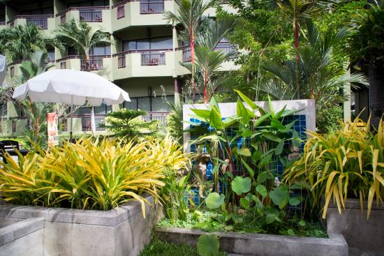 Phuket Island View : Общий вид