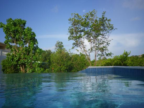 Oasis Creole: Piscine à débordement, vue sur forêt