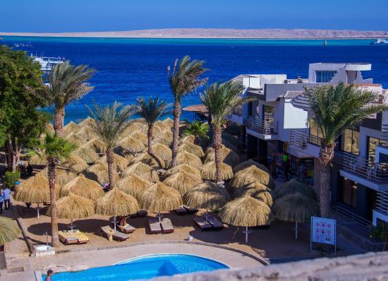 Premium Beach Resort: Beach View