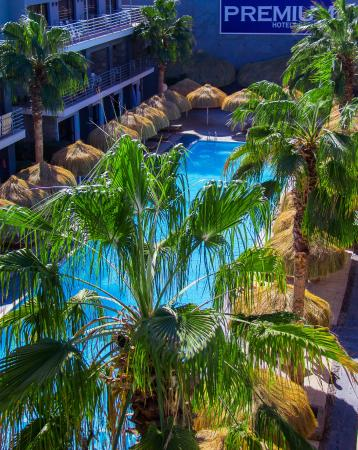 Premium Beach Resort: Pool View