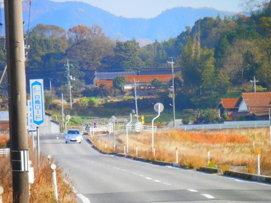 Izumo Orinoki Swan Farm Village: 出雲東部広域農道は白鳥ロードの名称になってます・