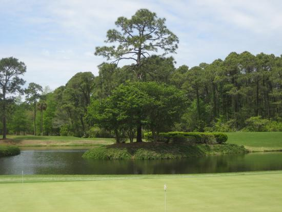 Hilton Head National: Tranquil setting