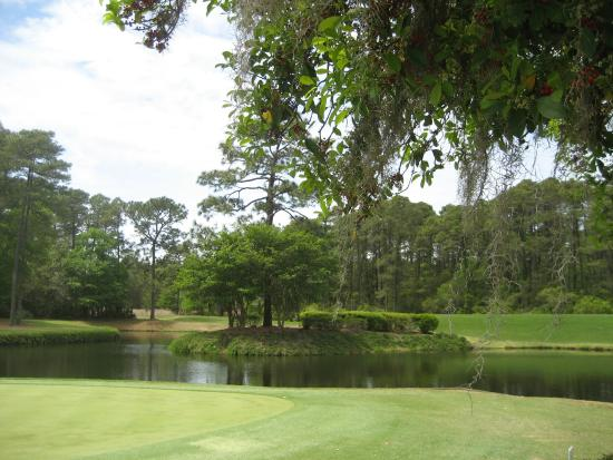Hilton Head National: Well maintained