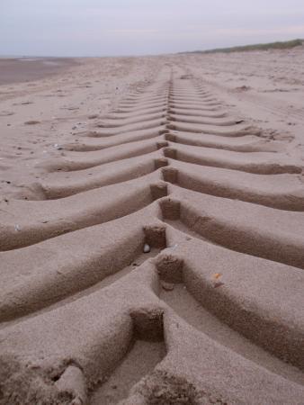 Fletcher Badhotel Callantsoog: strand Callantsoog