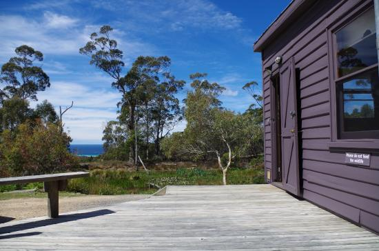 Freycinet Eco Retreat: View from Saltwater Shack - sunshine on the deck