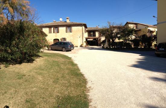 Agriturismo Il Borghetto: The driveway to Il Borghetto