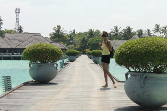 Olhuveli Island: Way to Resort